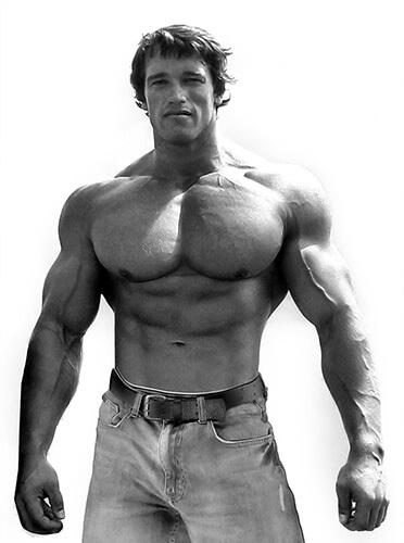 Bodybuilder Arnold Schwarzenegger