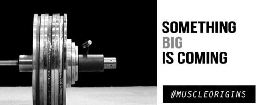 Sigue la creación de una marca anabólica: MyoGen